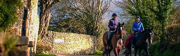 FEI Equestrian World - FEI Equestrian World - März 2016