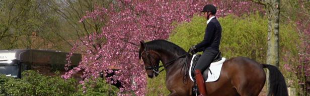 FEI Equestrian World - FEI Equestrian World - Mai 2016