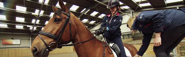 FEI Equestrian World - FEI Equestrian World - Juli 2016
